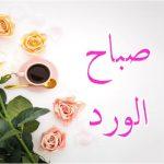 صباح الورد وعطره